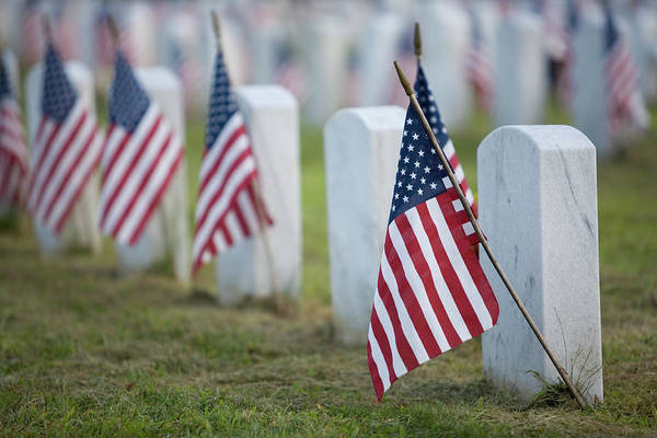 Wall Art - Photograph - Flags For The Fallen by Ronbergeron