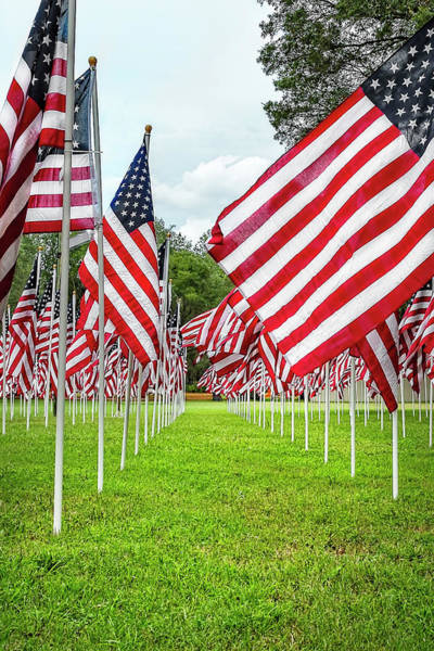 Photograph - Flags Of Valor by Kay Brewer