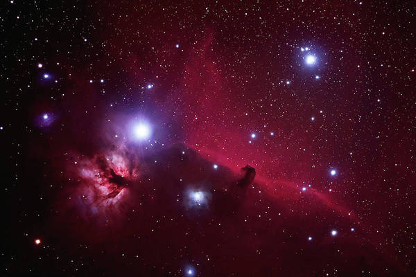 Photograph - Flame And Horsehead Nebula by Pat Gaines