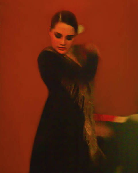 Photograph - Flamenco Series 2 by Catherine Sobredo