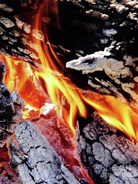 Flammable Wall Art - Photograph - Flames by D Hackett