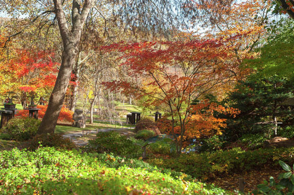 Photograph - Flaming Colors Of Japanese Garden by Jenny Rainbow
