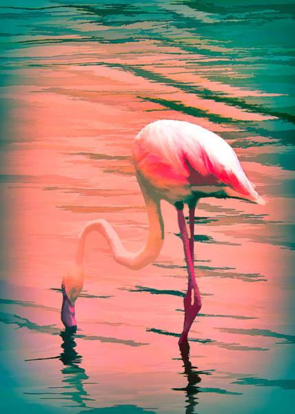 Mixed Media - Flamingo Art by Rosalie Scanlon