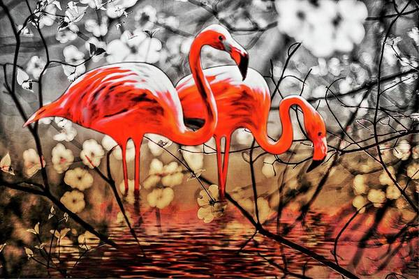 Digital Art - Flamingos by AE collections