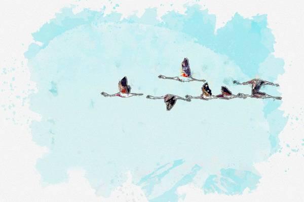 Painting - Flamingos -  Watercolor By Ahmet Asar by Ahmet Asar