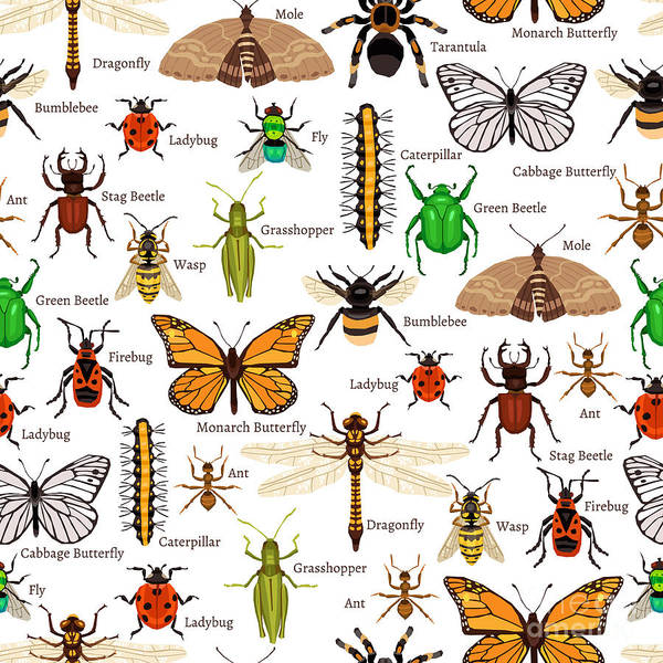 Flat Insects Seamless Pattern Vector Art Print