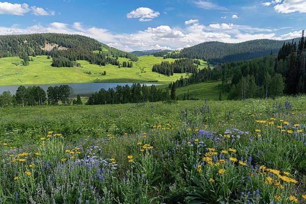 Wall Art - Photograph - Flat Top Wilderness Region Colorado by Tibor Vari