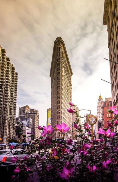 Wall Art - Photograph - Flatiron And Flowers by Nicklas Gustafsson