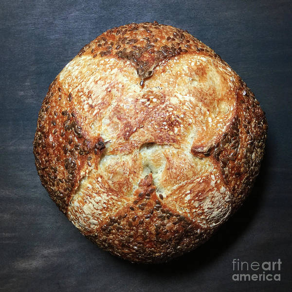 Flax Seed Sourdough 1 Art Print