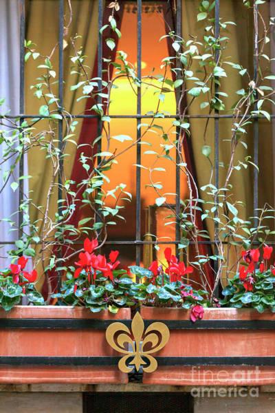 Fleur De Lis Photograph - Fleur De Lis In Rome by John Rizzuto