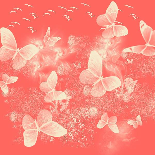 Photograph - Flight Of Butterflies by Jenny Rainbow