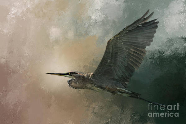 Great Blue Heron Wall Art - Photograph - Flight Of The Great Blue by Marvin Spates