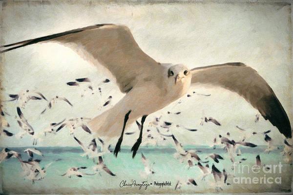 Digital Art - Flight Of The Gulls by Chris Armytage