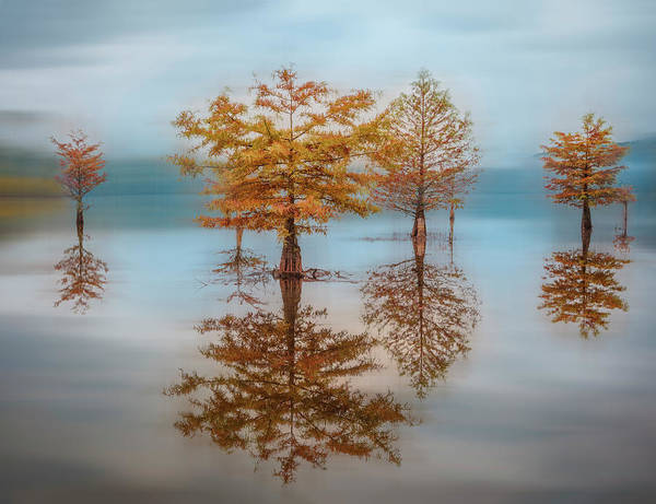 Photograph - Floating At Dawn Dreamscape II by Debra and Dave Vanderlaan