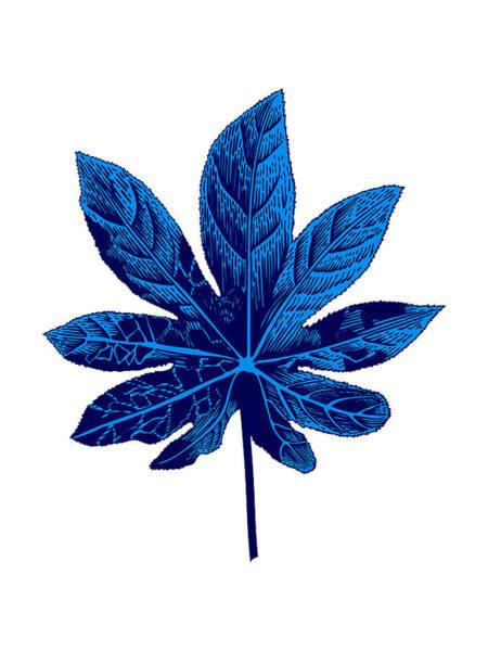 Wall Art - Mixed Media - Floating Blue Leaf by Naxart Studio