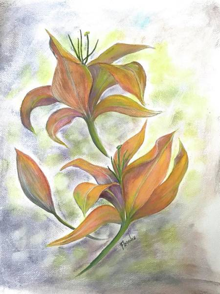 Painting - Floating Irises  by Florence Ferrandino