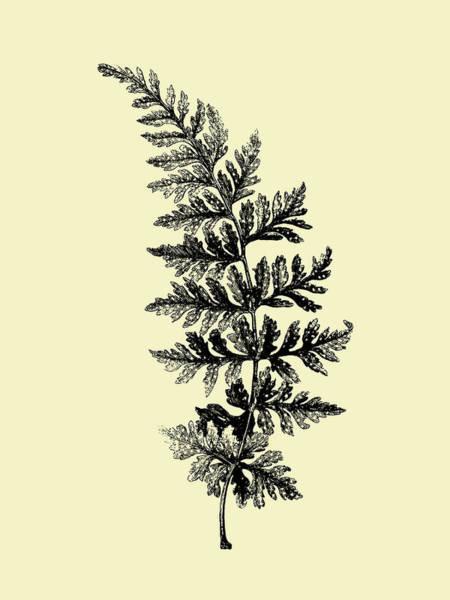 Wall Art - Mixed Media - Floating Leaf Branch I by Naxart Studio