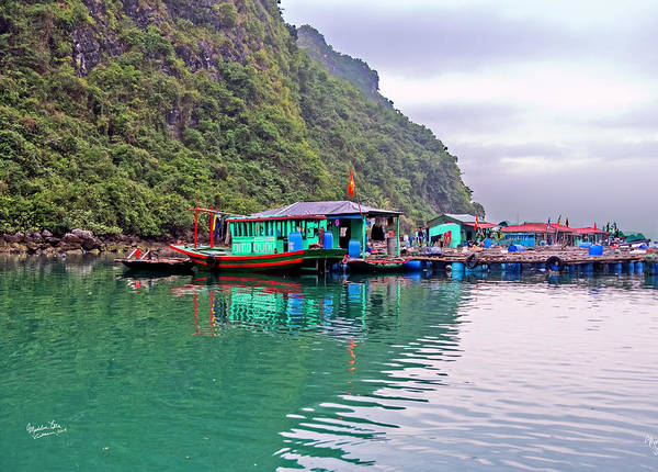 Wall Art - Photograph - Floating Market In Halong Bay, Vietnam by Madeline Ellis