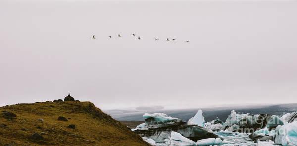 Photograph - Flock Of Birds Flying, Glacial Ice Melting On Mountais Of Iceland by Joaquin Corbalan