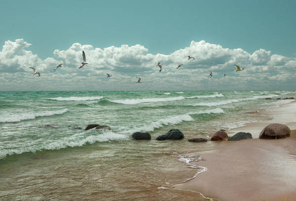 Photograph - Flock Of Gulls Flying Over Sturgeon Bay In Lake Michigan by Randall Nyhof