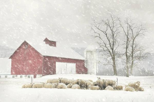 Mammal Mixed Media - Flock Of Sheep by Lori Deiter