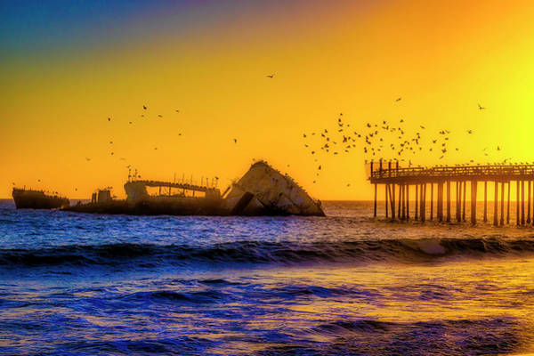 Wall Art - Photograph - Flocks Of Birds Over Sunken Ship by Garry Gay