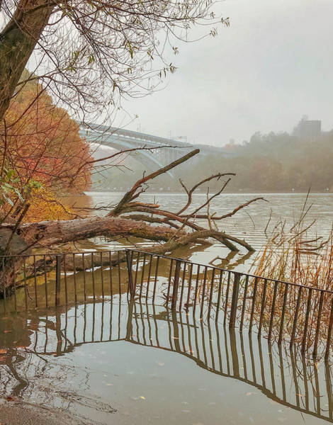 Photograph - Flood by Shannon Kelly
