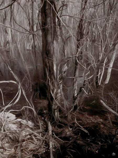 Photograph - Floodplain Forest Vines In Sepia by Wayne King