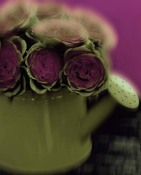 Digital Art - Floral Art 401 by Miss Pet Sitter