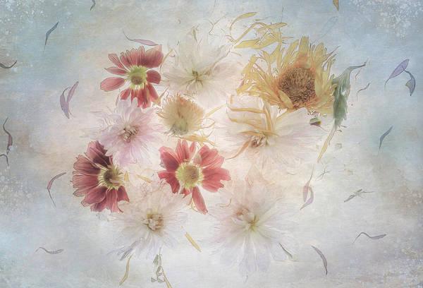 Digital Art - Floral Delight by Glenys Garnett