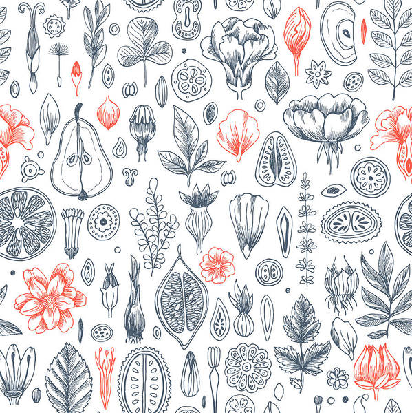 Floral Elements Background. Linear Art Print