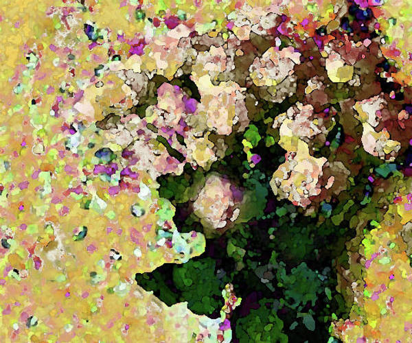Photograph - Floral Fiesta In Yellow by Corinne Carroll