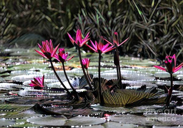 Wall Art - Digital Art - Floral Flower Lily Pods Vietnam  by Chuck Kuhn