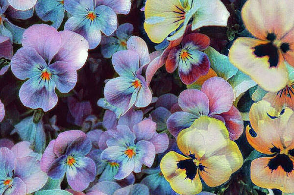 Photograph - Floral Foliage by AE collections