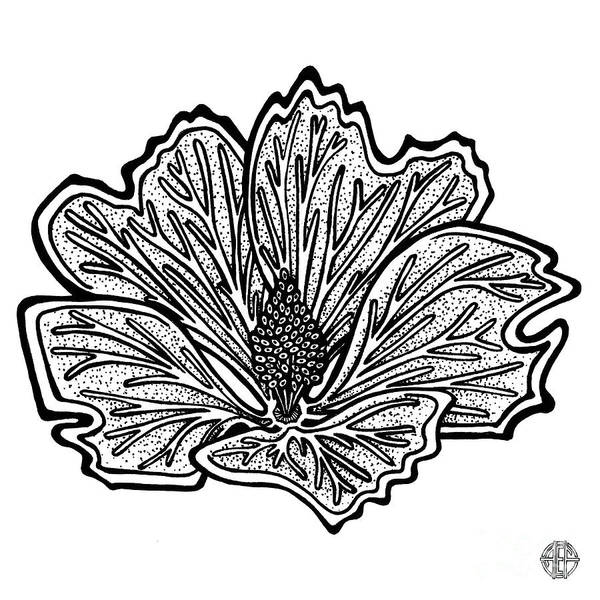 Drawing - Floral Icon 39 by Amy E Fraser
