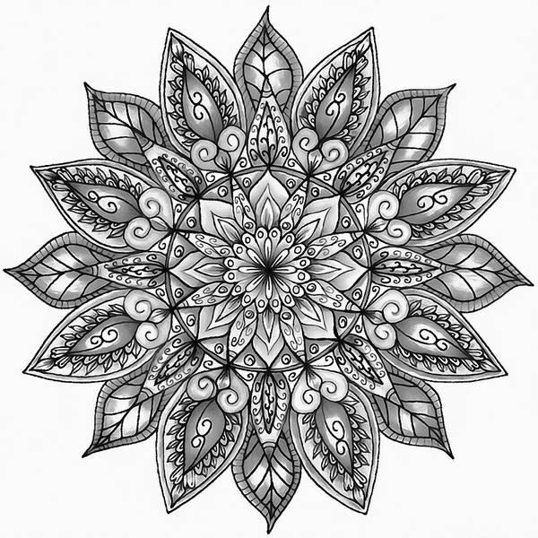 Painting - Floral Mandala - 05 by Andrea Mazzocchetti