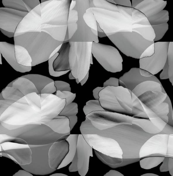 Digital Illustration Digital Art - Floral Petals Upon Petals by Eversofine
