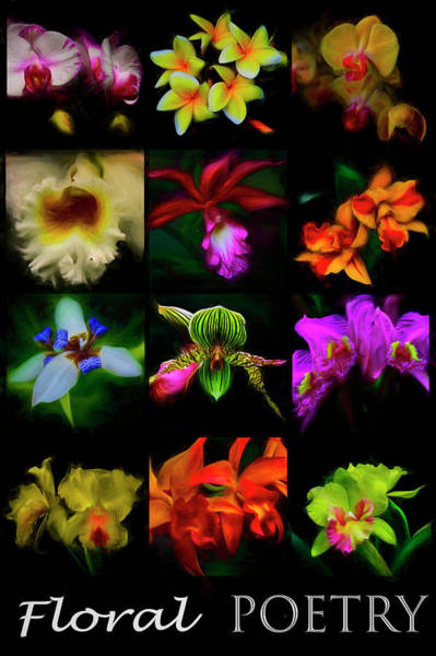 Photograph - Floral Poetry Painting by Debra and Dave Vanderlaan