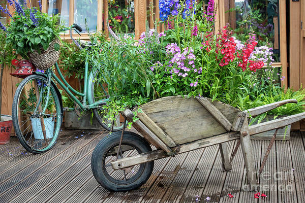 Photograph - Floral Wheelbarrow And Cycle by Tim Gainey