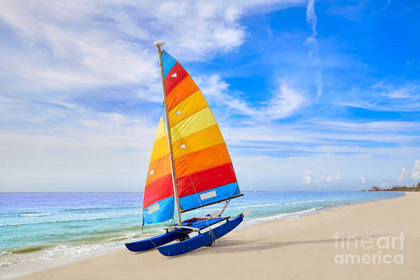 Wall Art - Photograph - Florida Fort Myers Beach Catamaran by Lunamarina