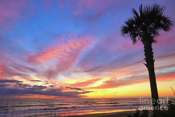 Wall Art - Photograph - Florida Sunrise by Kelly Pennington