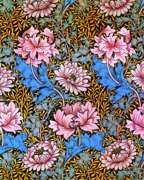 Wall Art - Painting - Florists Daisy, Chrysanthemum - Digital Remastered Edition by William Morris