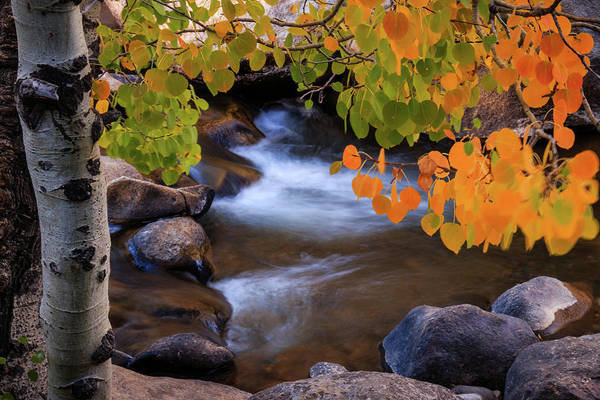 Herron Photograph - Flow Into The Fall Spectrum by Mike Herron