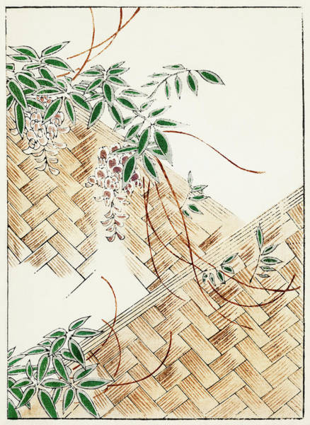 Wall Art - Painting - Flower Arrangement - Japanese Traditional Pattern Design by Watanabe Seitei
