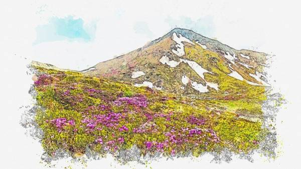Painting - Flower Bloom During Summer In Rhododendron Rumania -  Watercolor By Ahmet Asar by Ahmet Asar