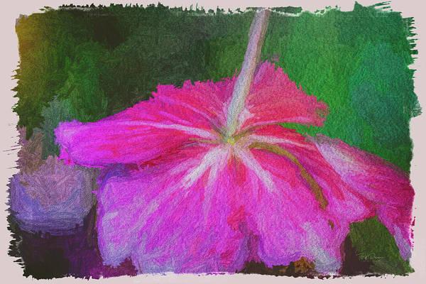 Photograph - Flower Bottom by Bill Posner