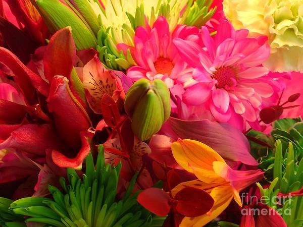 Photograph - Flower Bunch by Christina Verdgeline