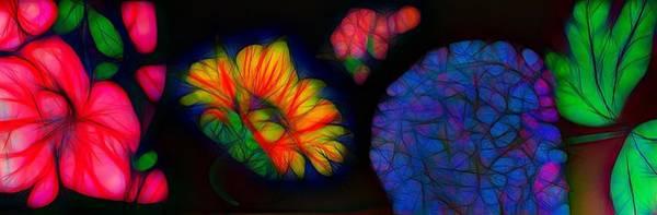 Wall Art - Photograph - Flower Drawing Abstract by Mark J Dunn