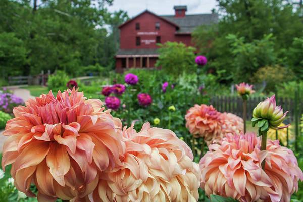 Bonneyville Mill Wall Art - Photograph - Flower Garden At Bonneyville Mill by Jason Champaigne
