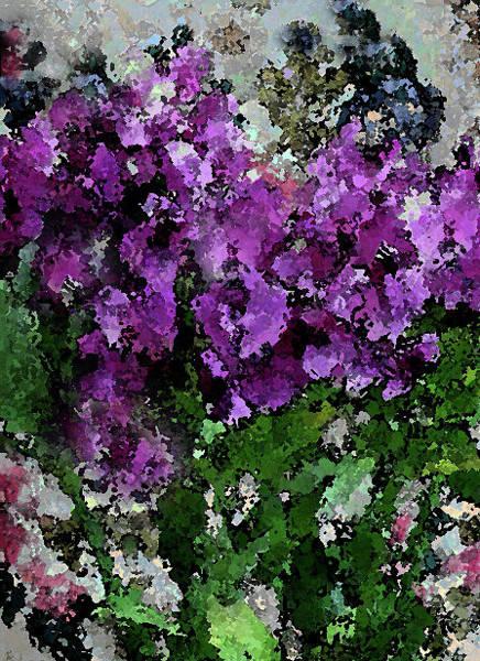 Photograph - Flower Garden Of Purple Blooms by Corinne Carroll